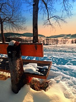 View into winter scenery by patrickjobst