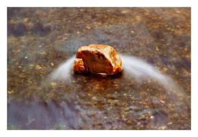 Rock and Water by Wilce