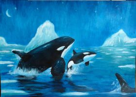 Arctic whale by Orcas-lover