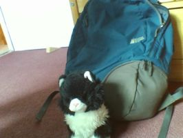 Scribbles' backpack and Thing (IRL) by Geli-K