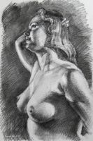 Study in Charcoal by roy-p