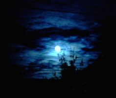 Blue Moon by schon