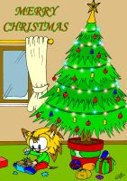 Merry Christmas 2009 by EUAN-THE-ECHIDHOG