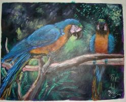 Blue and yellow macaws by Sapphire-Light