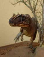 Ceratosaurus scratch by Gorgosaurus