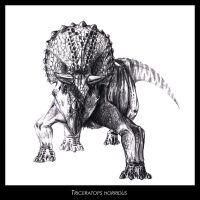 Triceratops horridus by highdarktemplar
