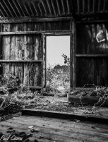 Old Barn. Black and White by chivt800
