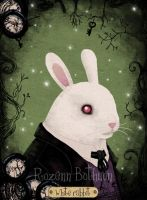 Wonderland: White rabbit by RozennB