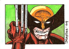 Color Wolverine Sketchcard by ElfSong-Mat