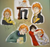 Albus S. Potter 5th year by mjOboe