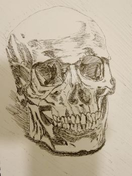 Pen And Skull by ExileOfDeath