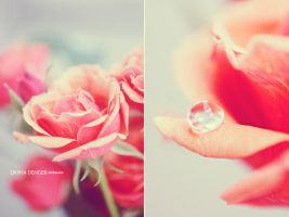 PERFECT ROMANCE II by onixa