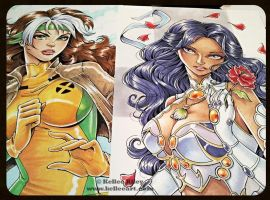 Rogue and Scheherazade finals by KelleeArt