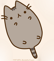 Pusheen by Meruetta