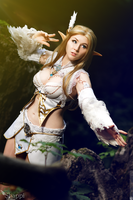 Forest spirit - Lineage 2 by Shappi