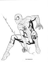 Spider-Man Inks by davidmarquez