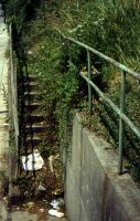 Northside Drive Stairs 2 by mutantmandias