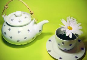 Would u like a cup of spring? by 123Stella