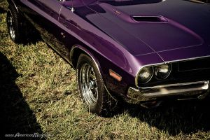 70 Plum Crazy Challenger by AmericanMuscle