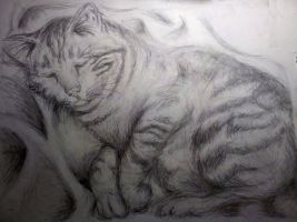Sleeping Tiger by MayanMuscle