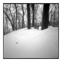 2015-041 Winter silence by pearwood
