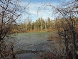 Vedder river south~1/26/2015~13 by Mathayis