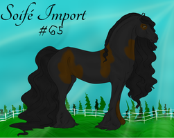 Soife Import 65 by NativeWolf330