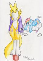 Renamon and Rainbow Dash by Mancoin
