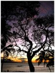 Tree At Sunset by flare89