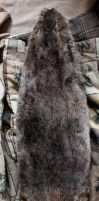 Beaver pelt for sale WITH FEET AND CLAWS AND TAIL by lupagreenwolf