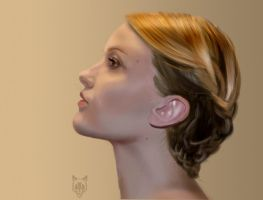 Hair Style 3 - speed study by Wolkenfels