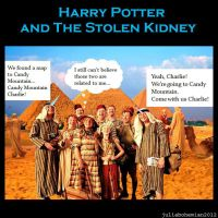Harry Potter and the Stolen Kidney by Juliabohemian