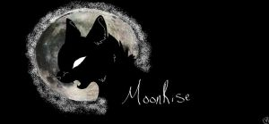 MoonRise {Mock} Banner by BittyKitty1
