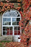autumn window by Bootcoot