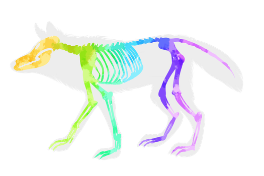 (FREE) fun fact: wolf bones are made of candy by DidTheSqd