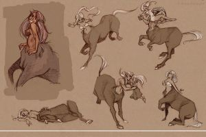 Centaur Sketches1 by jbsdesigns