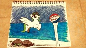 Emerald Storm, the Gulf Coast's Weather Pony by holographic-poptarts