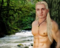 The Elven Lord of Ithilien by Aranes1
