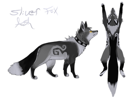 Silver fox update. by VengefulSpirits