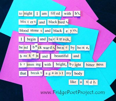 The Daily Magnet #360 by FridgePoetProject