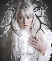 Queen of Spiders by sofijas