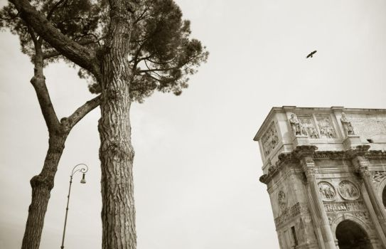 Rome by photoleto