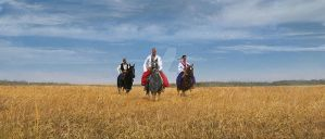 Cossacks by wert23