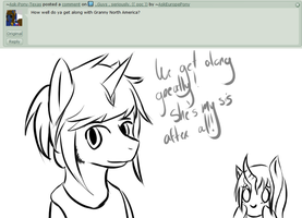 Qs 23 -How well do you get along w/ North America by AskEuropePony
