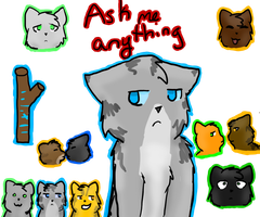 Ask Me Anything by Ask--Jayfeather