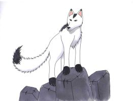 Ivy on the Rocks by Moonlight-The-Wolf