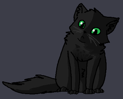 Wittle Hollyleaf by bumblecloud