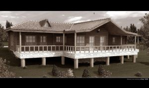 wood house by Ertugy