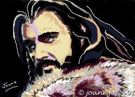 Richard Armitage as Thorin Oakenshield by jos2507