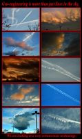 Toxic Chemicals Being Sprayed in Our Skies by Undercheese101